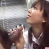頭を撫でられながら先生のチンポをしゃぶる少女のお口で喉奥射精しちゃう